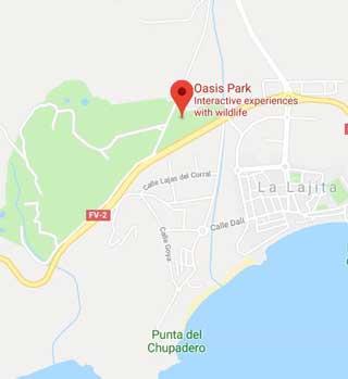 Oasis Park Map